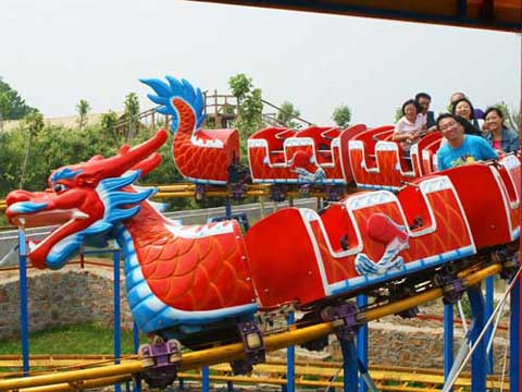 14 Person Dragon Roller Coaster for Kids for Australia