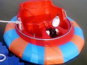 Electric Bumper Boats for Sale for Australia