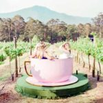 Beston Tea Cup Rides Installed at Australia
