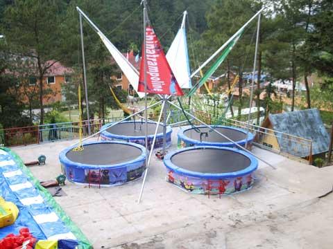 New Bungee Trampoline
